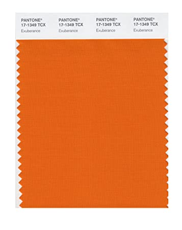 Pantone 17 1349 Tcx Smart Color Swatch Card Exuberance House