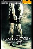 Flesh  Factory: An Extreme Horror Novel (English Edition)