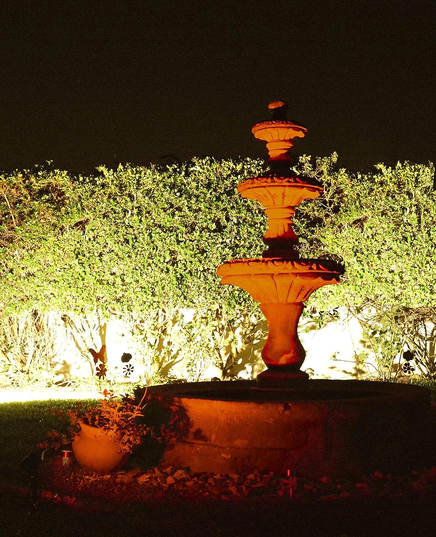 BlissLights 16 Color LED Remote Control Garden Accent Light ...