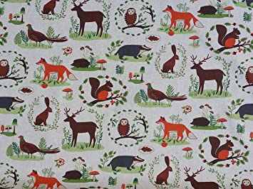 Foxes badgers hare Owls deer pheasant Foxes Woodland Forest Birds ...