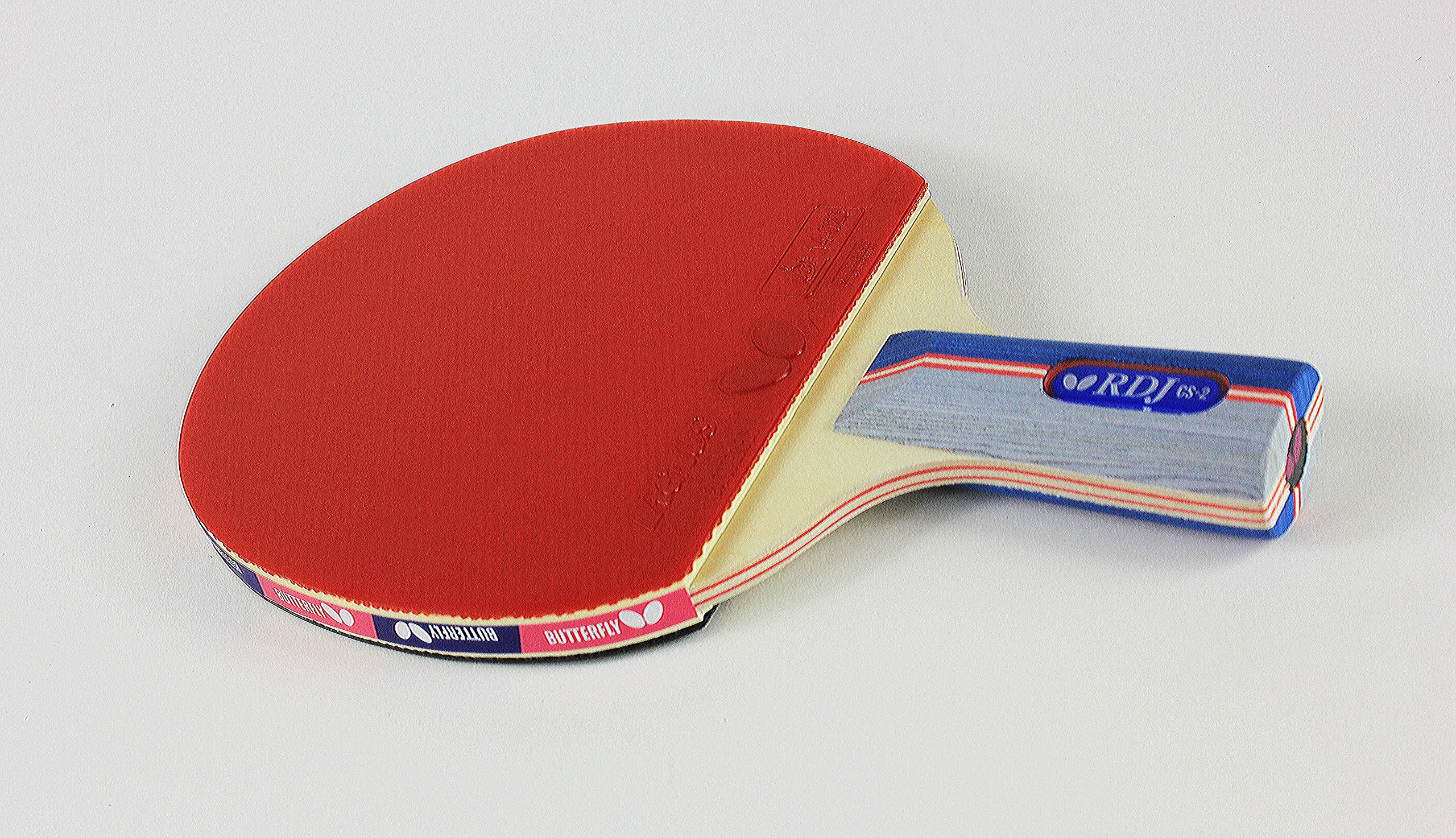 Butterfly RDJ CS2 Ping Pong Paddle – ITTF Approved Table Tennis Racket – Excellent Balance of Spin, Speed, and Control – Short Handle Table Tennis Paddle