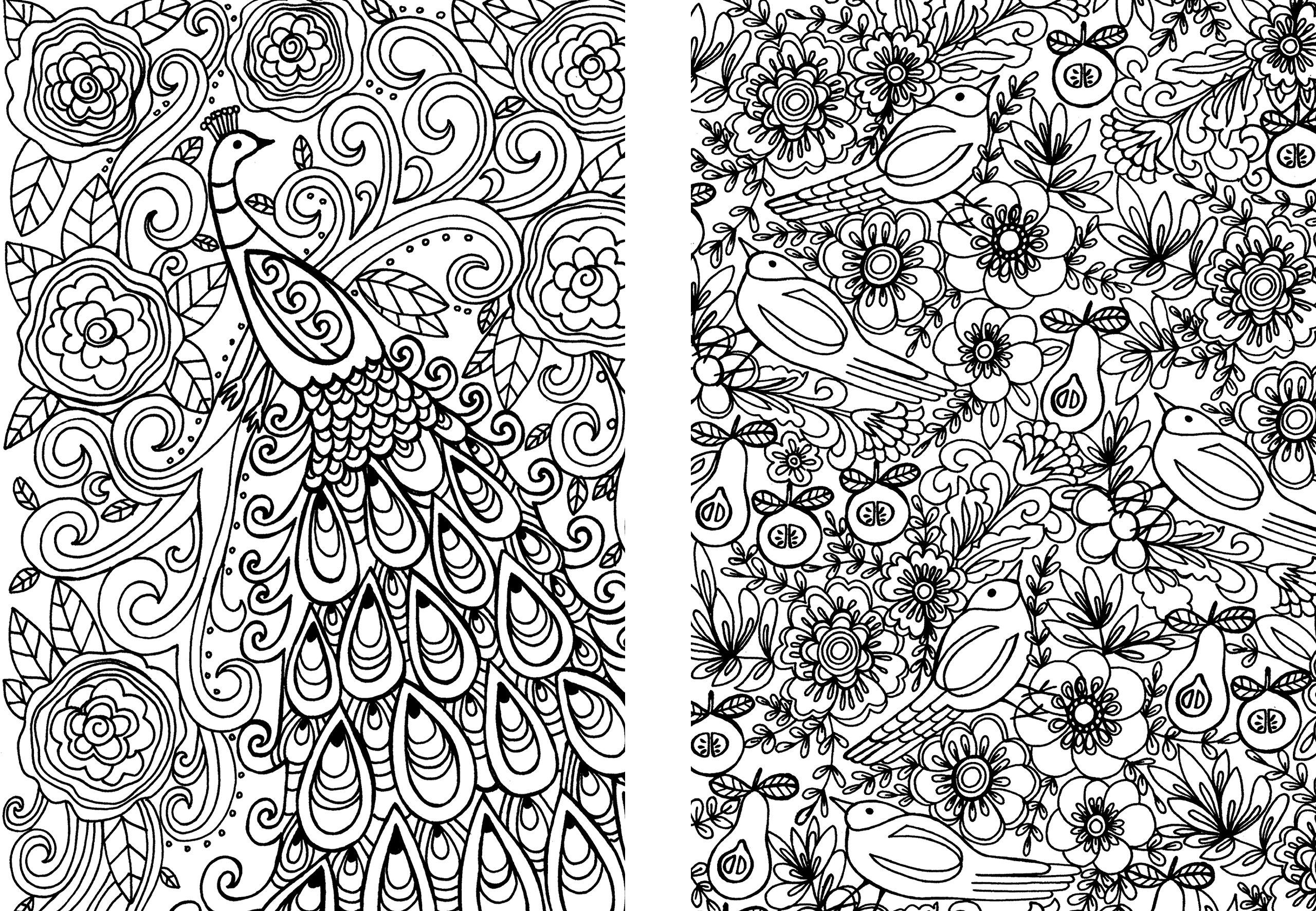 Disegni Da Colorare Art Therapy.Art Therapy Giardini In Fiore Amazon It Art Therapy Libri