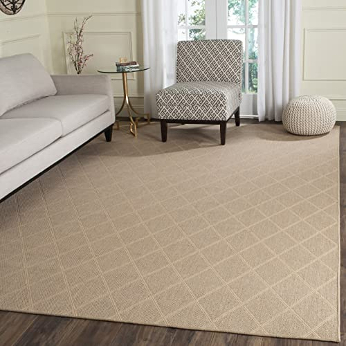 Safavieh Palm Beach Collection PAB514A Hand Woven Seagrass Jute Area Rug 5 x 8
