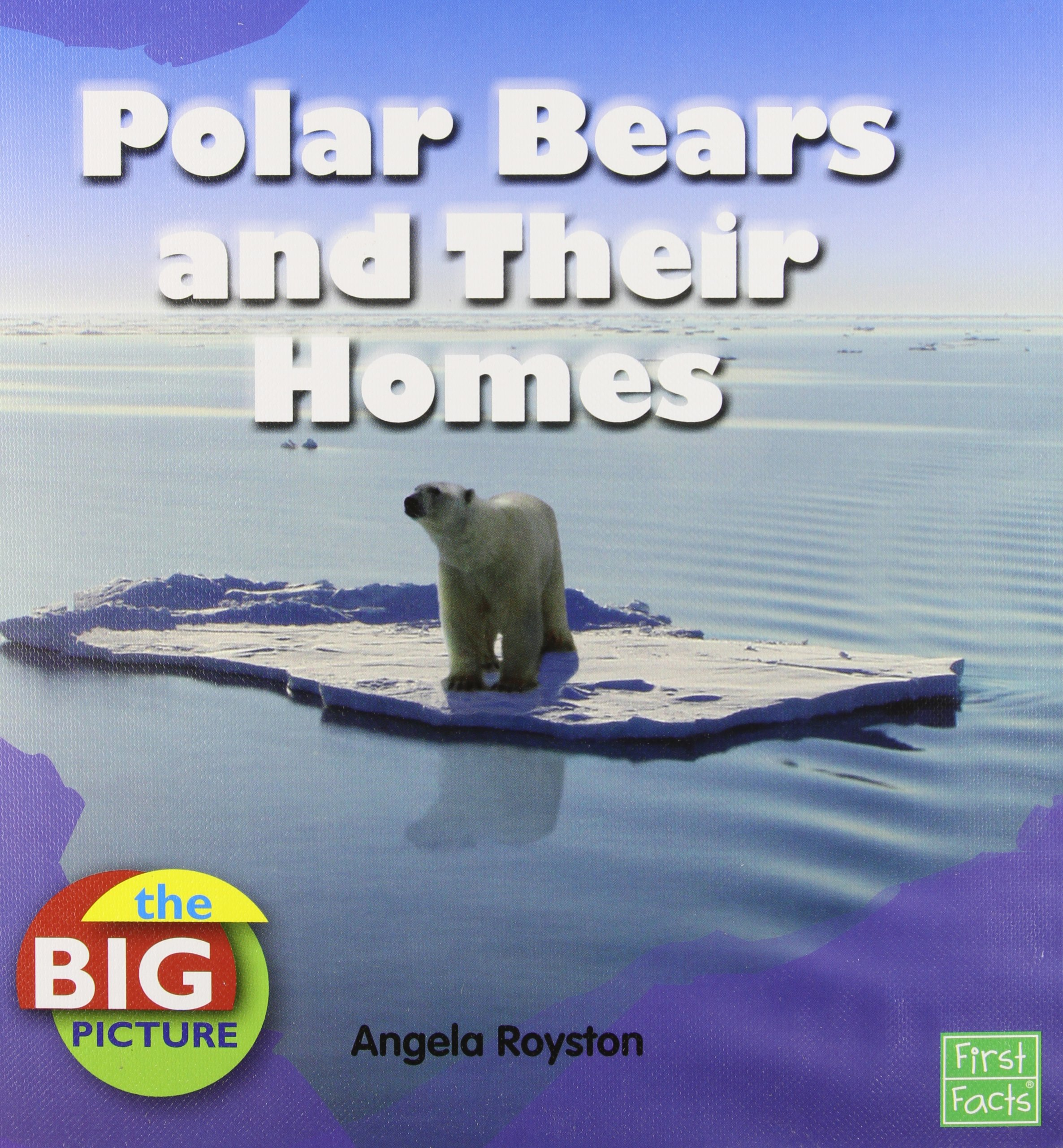 Download Polar Bears and Their Homes (The Big Picture: Climate) pdf epub