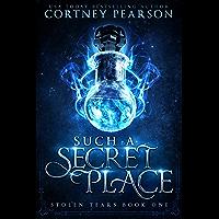 Such A Secret Place (Stolen Tears Book 1) (English Edition)