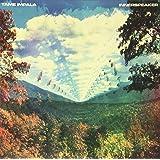 Innerspeaker (2LP) [Vinyl LP]