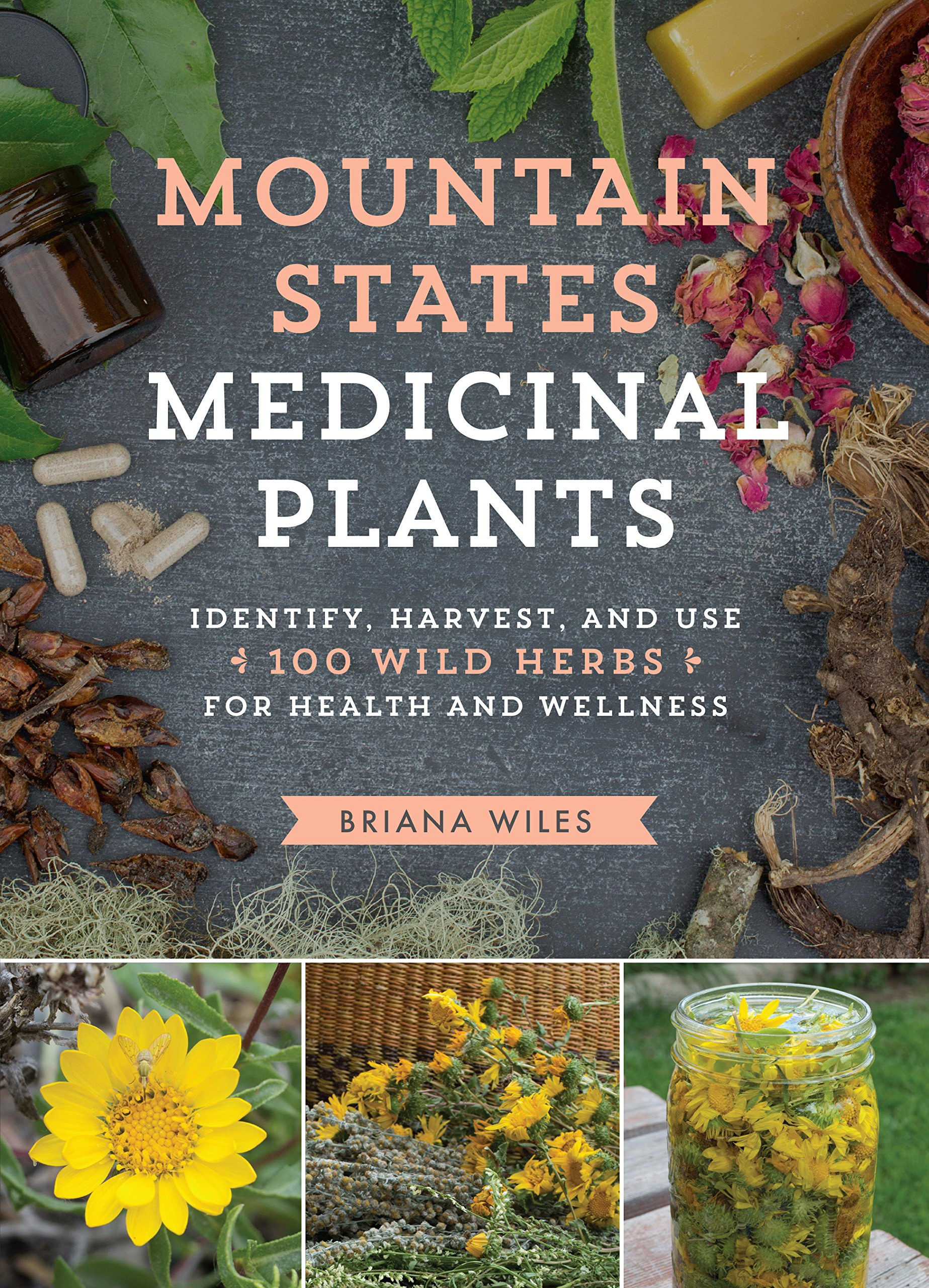 Download Mountain States Medicinal Plants: Identify, Harvest, and Use 100 Wild Herbs for Health and Wellness PDF