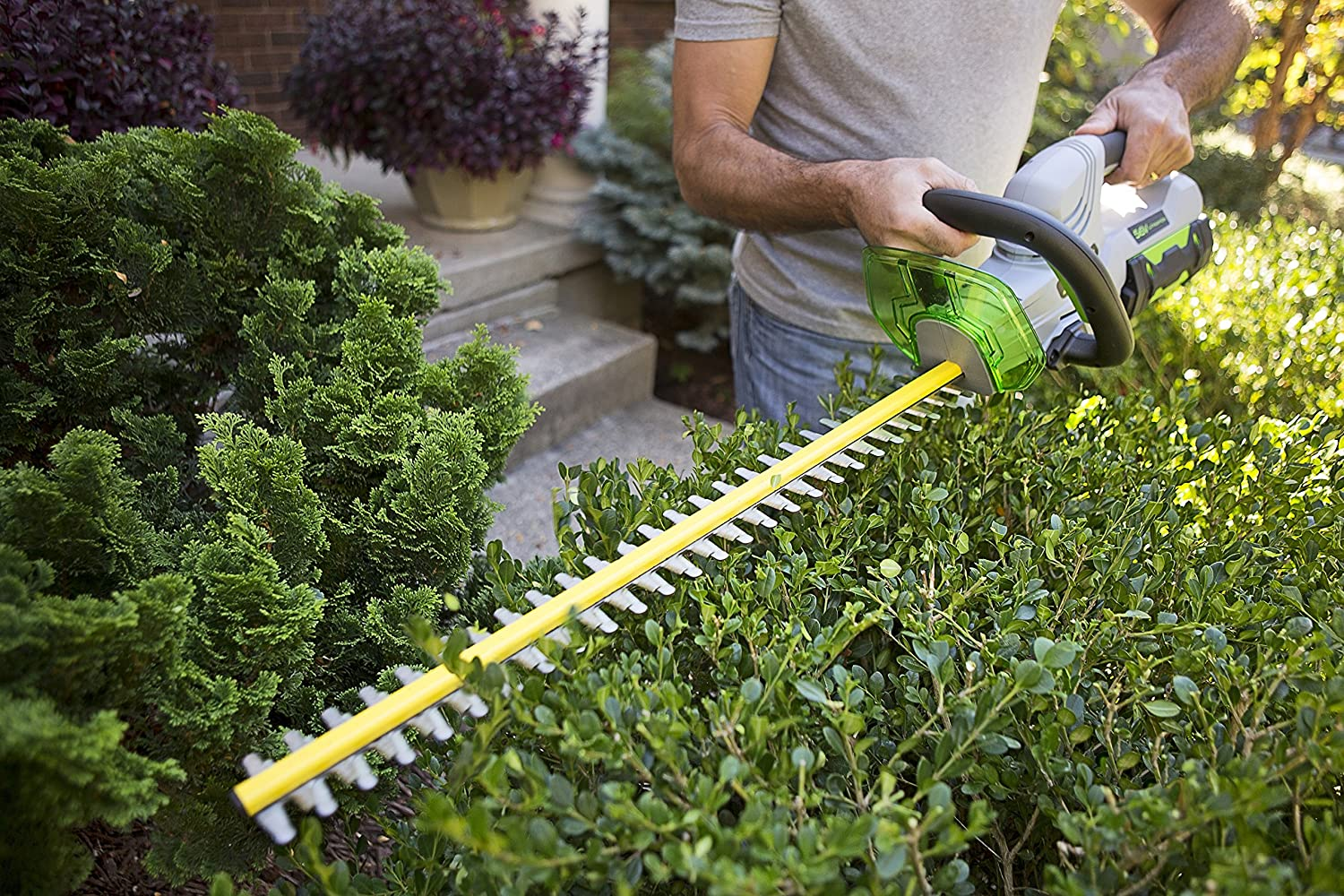 EGO Power 24-Inch 56-Volt Lithium-ion Cordless Hedge Trimmer Battery and Charger Not Included