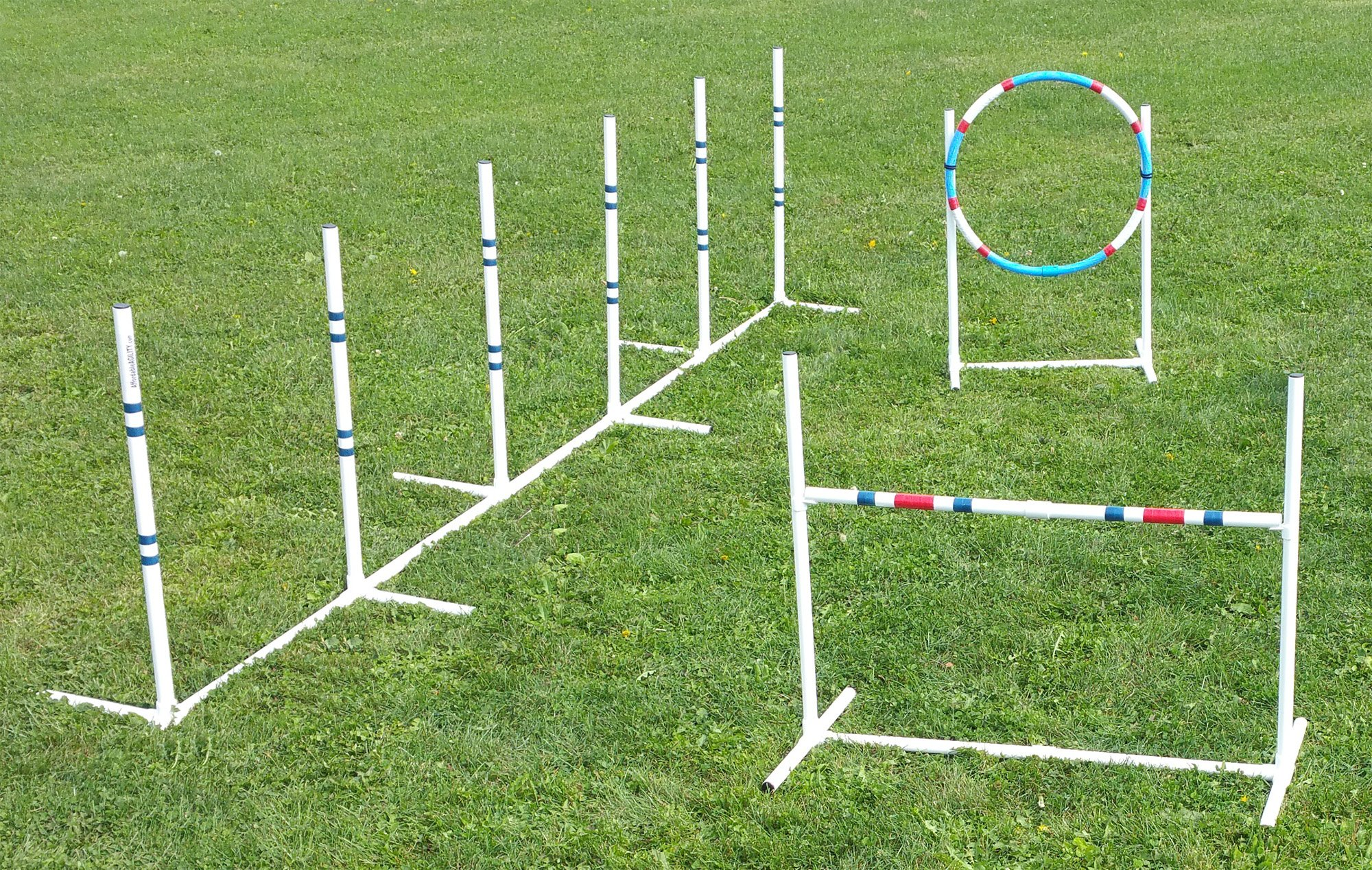 Dog Agility Essentials Set by Affordable Agility