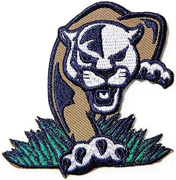 Florida International University Fiu Panthers Team College Football