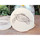 Sea Turtle Absorbent Drink Coasters Light Beige 4.25 inch Set of 4 McCarter Coasters