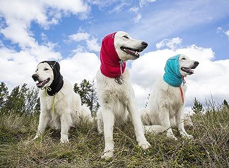 Amazon Com Rc Pet Products Summit Dog Snood Dog Neck Warmer