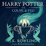 Harry Potter et la Coupe de Feu: Harry Potter 4