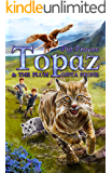 Topaz and the Plum-Gista Stone (Topaz the Conjure Cat Book 2)