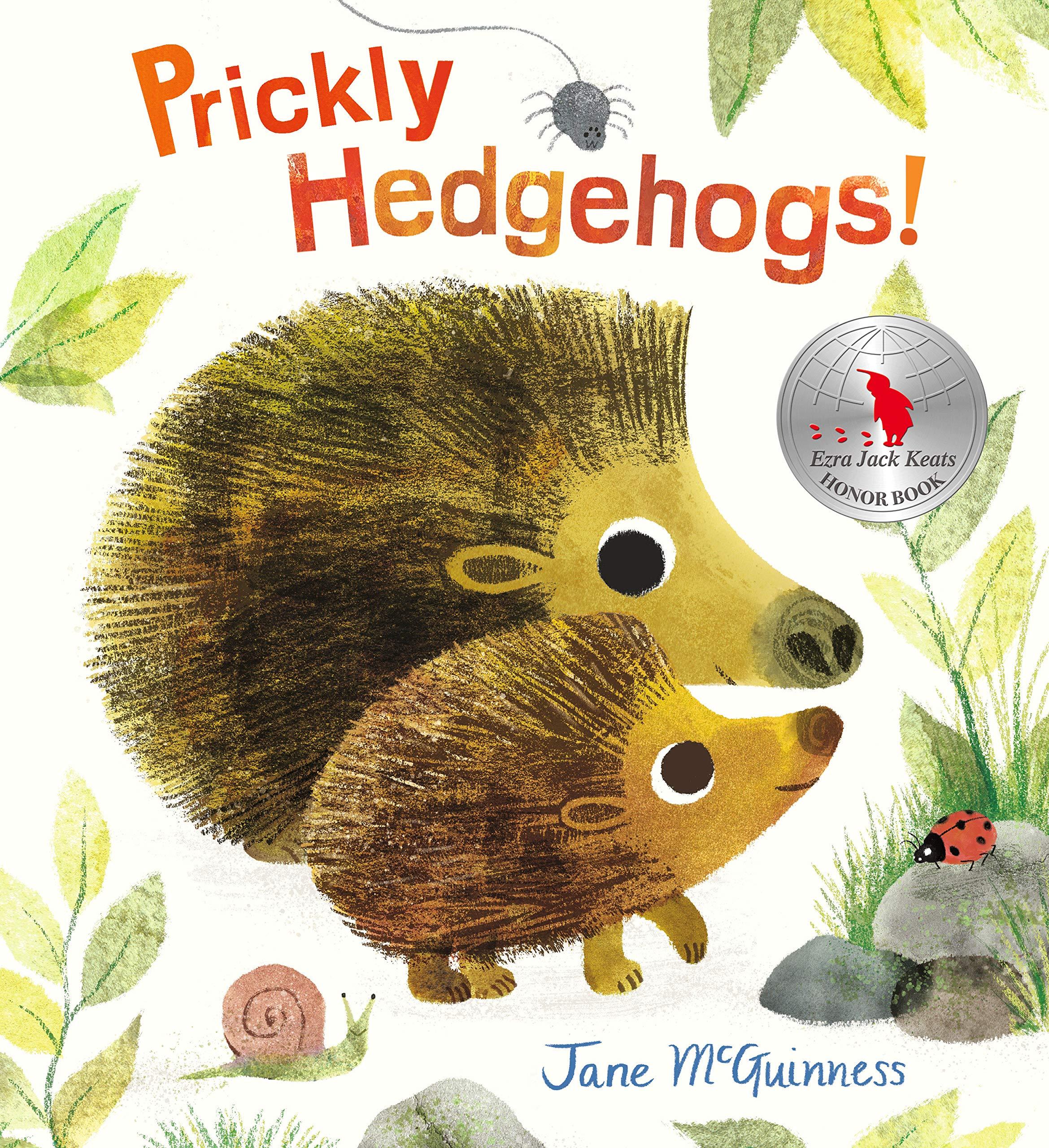Image result for prickly hedgehog