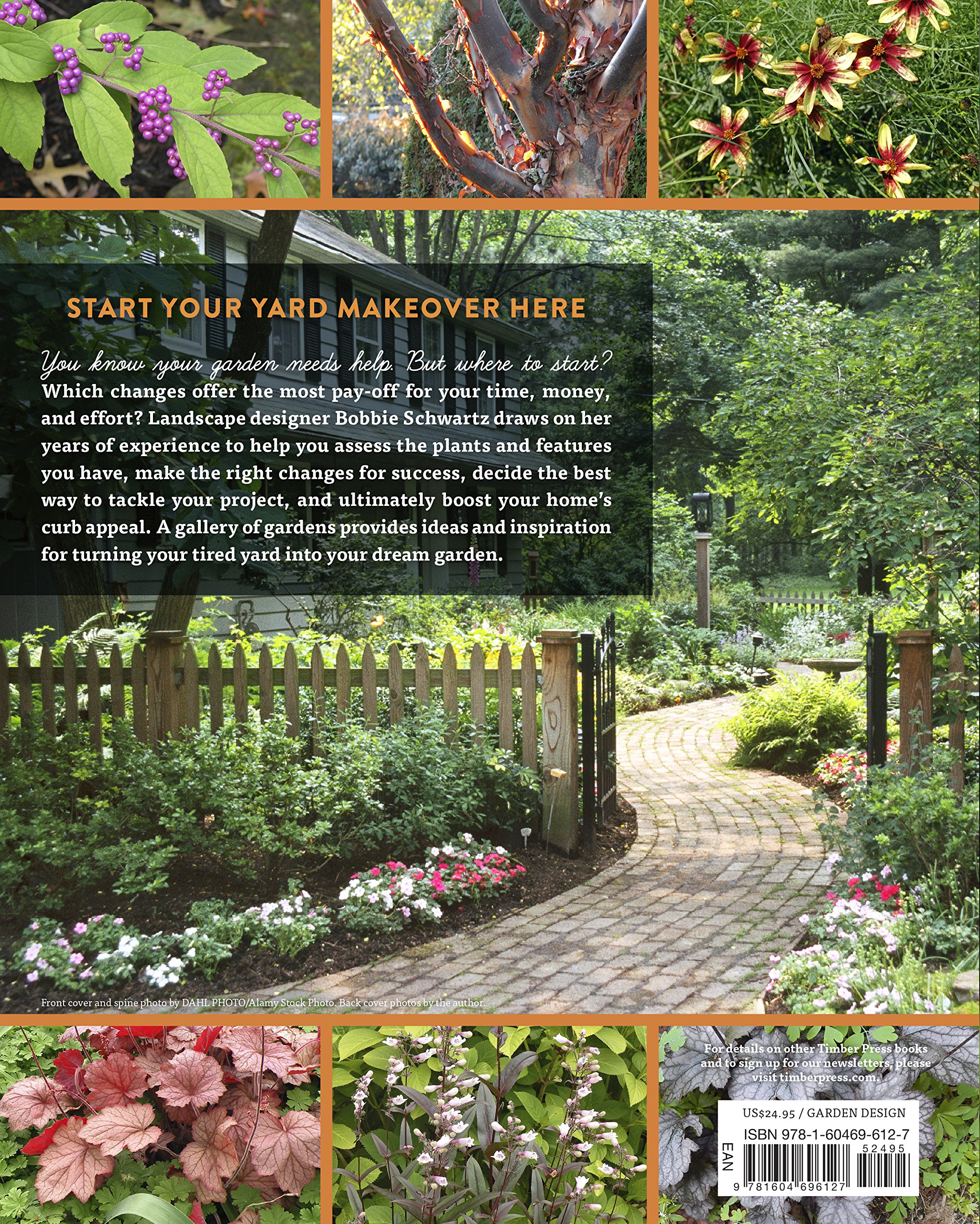 Beautiful How to Start A Garden