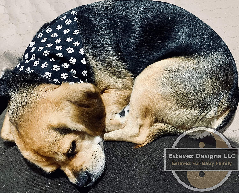 Small Reversible Pet Collar Bandana Snoopy Shamrocks on Black