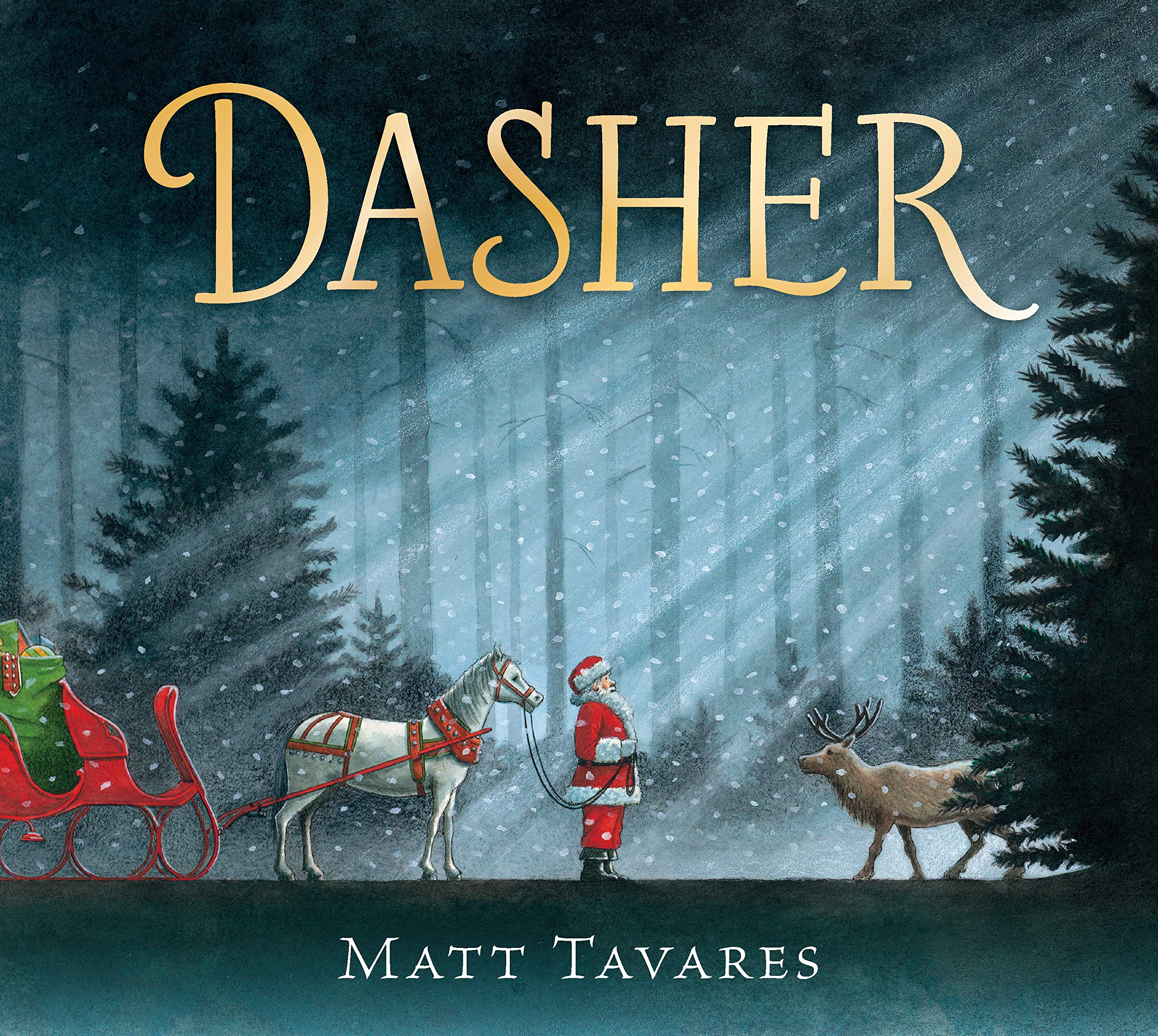 Image result for dasher by matt tavares