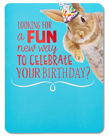 Image Unavailable Not Available For Color American Greetings Funny Bunny Birthday Card With Music