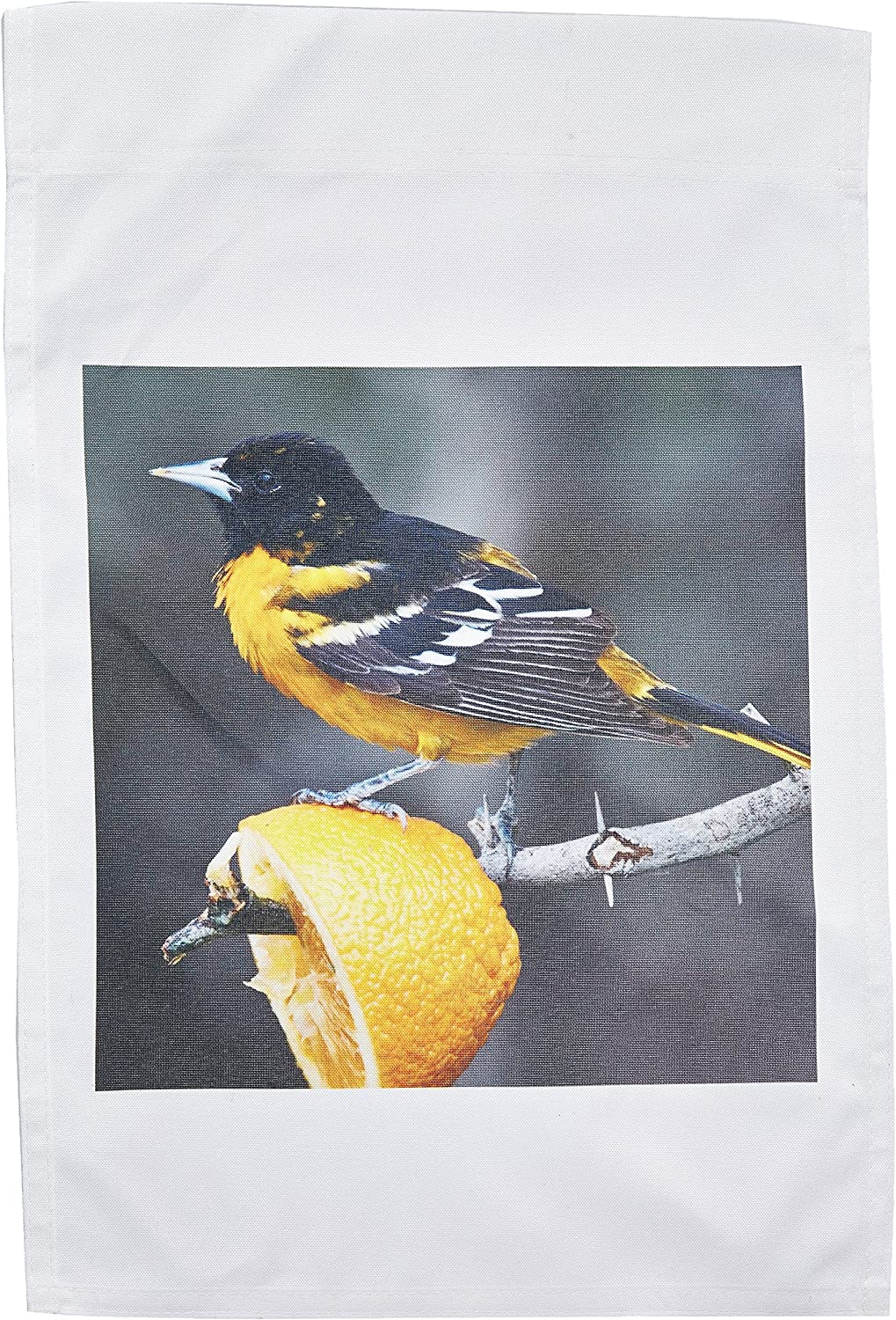 3dRose fl_94471_1 South Padre Island Texas Baltimore Oriole Bird US44 Ldi0230 Larry Ditto Garden Flag, 12 by 18-Inch