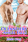 The Oleanders of Angel Falls: M/M Straight to Gay First Time Romance Thriller Mystery