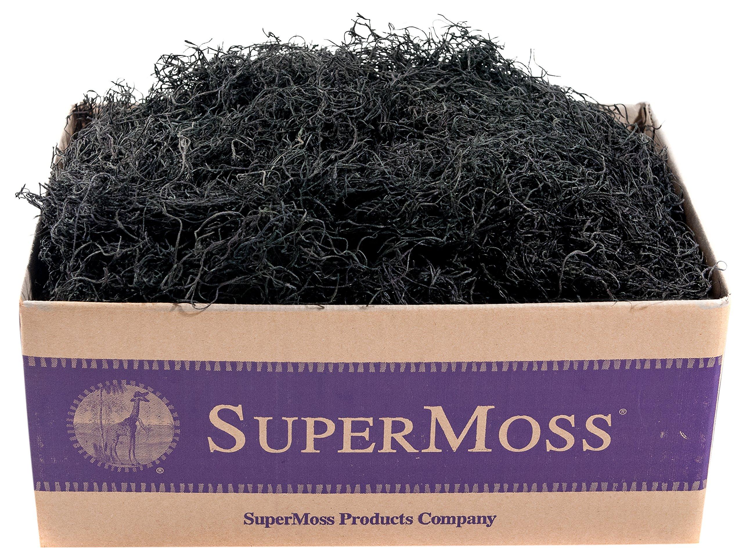 SuperMoss (27017) Spanish Moss Preserved, Black, 3lbs