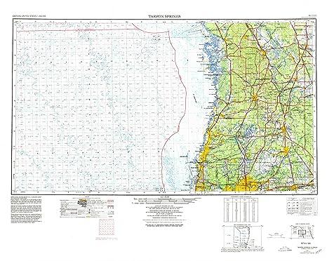 Tarpon Springs Florida Map.Amazon Com Tarpon Springs Fl Topo Map 1 250000 Scale 1 X 2