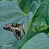 Osservando natura. Ediz. illustrata