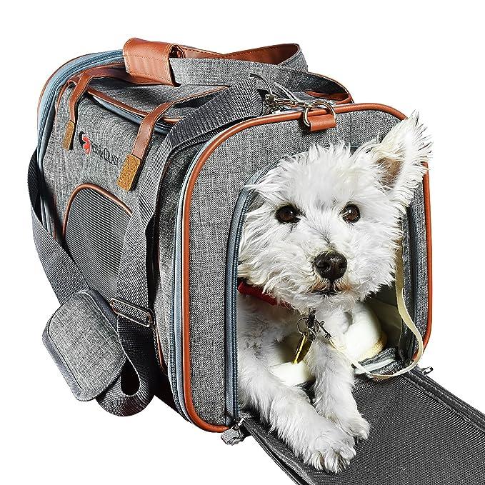 Amazon.com: ESS y Craft Pet Carrier Airline Aprobado | Side ...