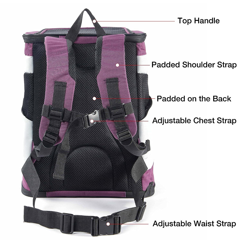Mochila Perro Gato Pequeños Resistente Backpack Plegable Transportín Portatil para Viaje Trekking Moto Avión Entrenar con Mascota Peso de hasta 6.5 kg ...