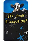 American Greetings Gift Holder Graduation Card (Dancing Cow)