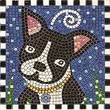 Kit Mosaico 20x20 , Cane