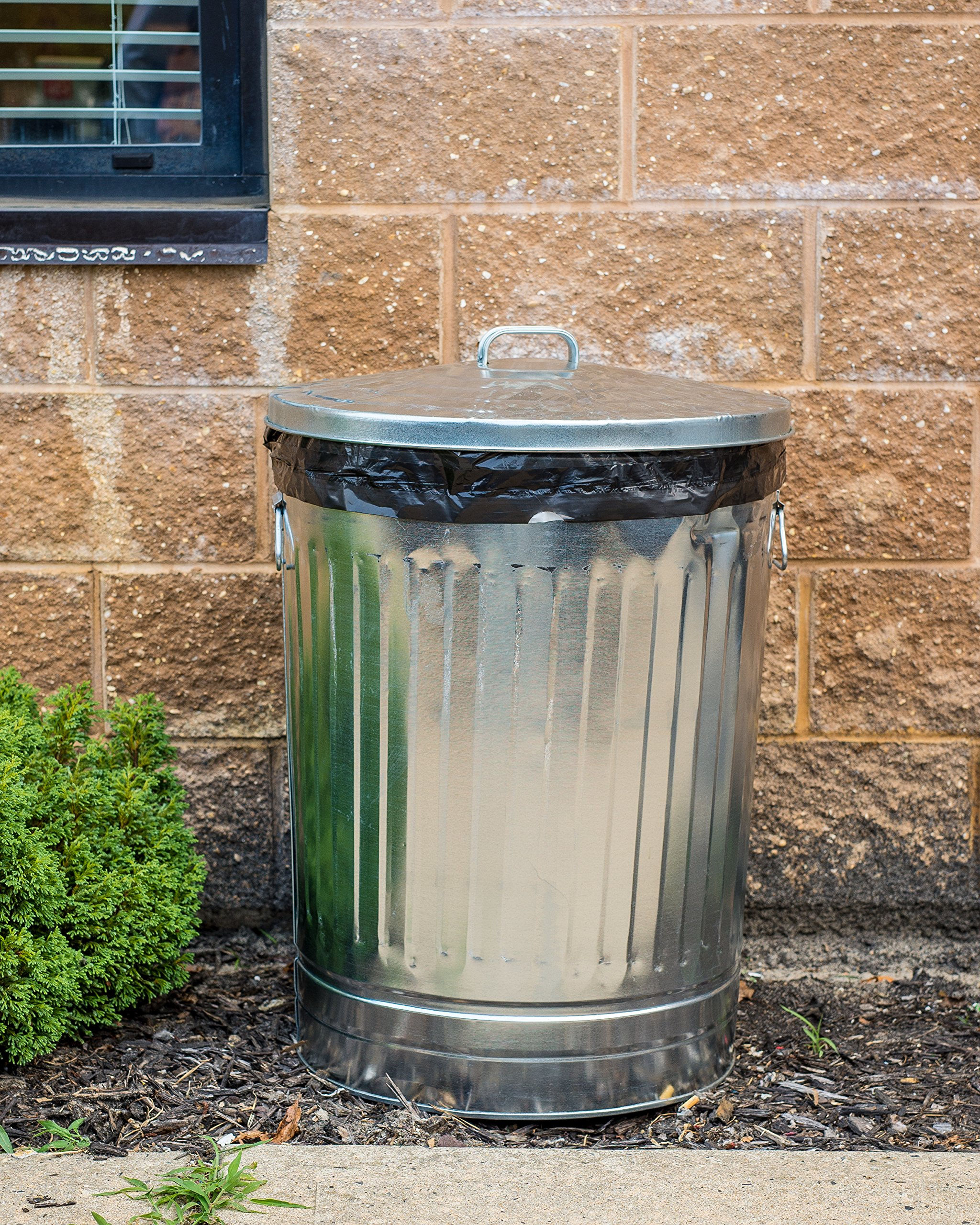 Plasticplace 35 Gallon Trash Bags, 1.5 Mil, 33''W x 48''H, Black, 100 / Case by Plasticplace