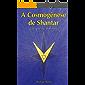 A Cosmogênese de Shantar: Códigos Voronandeck