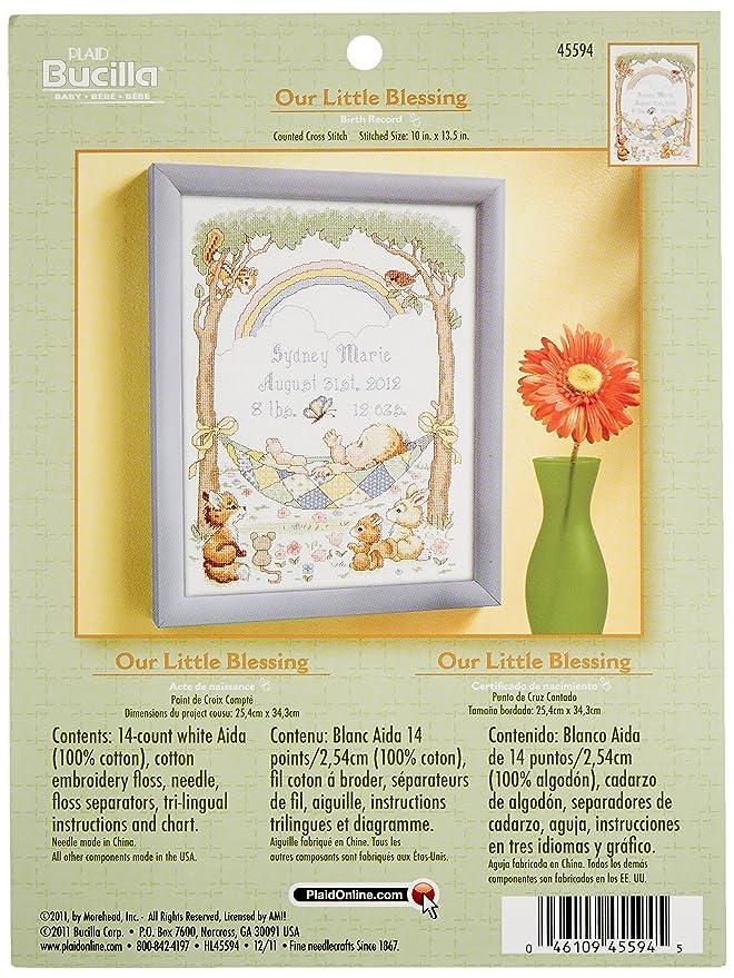 Amazon.com: Bucilla Counted Cross Stitch Birth Record Kit, 10 by ...