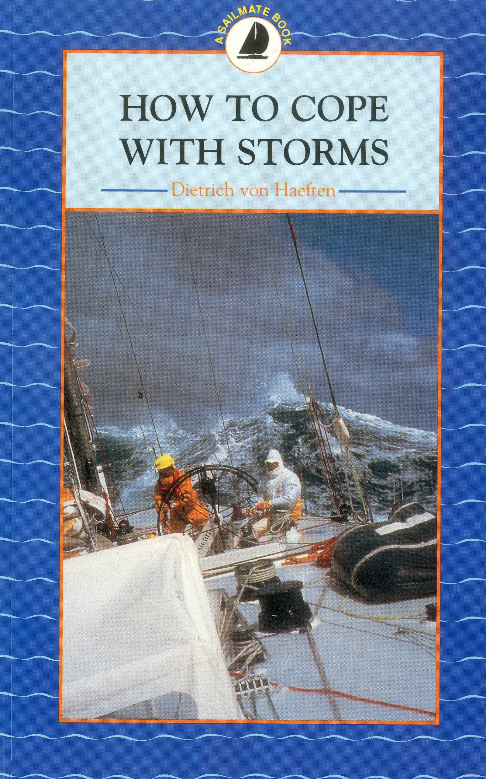 Download How to Cope with Storms PDF