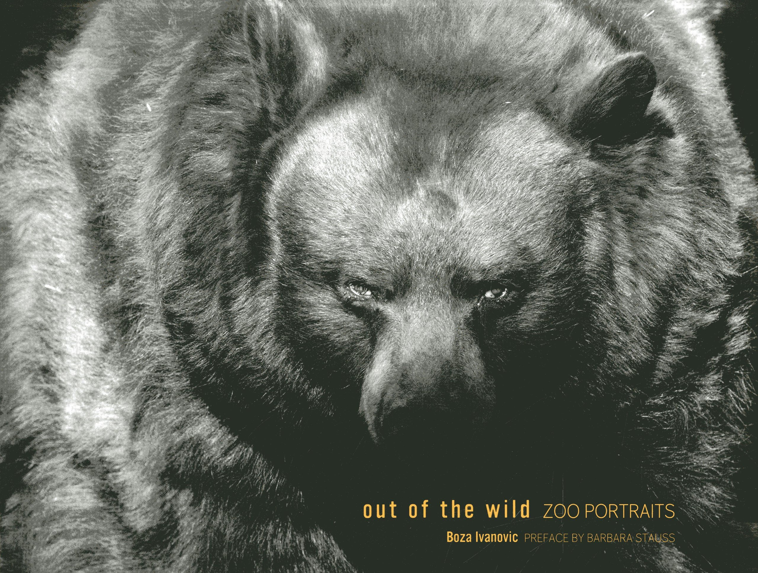 Out of the wild zoo portraits hardcover october 16 2013