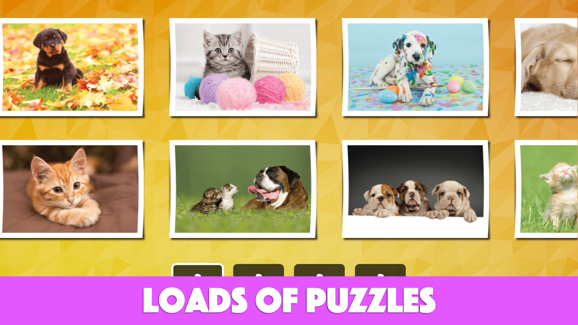 amazon com fun cats u0026 dogs jigsaw puzzles for kids and toddlers