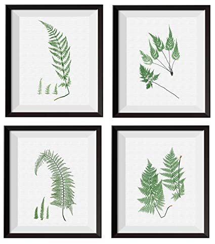 Amazon.com: Uhomate 4 pcs Garden Plants Set Nature Printed Fern ...