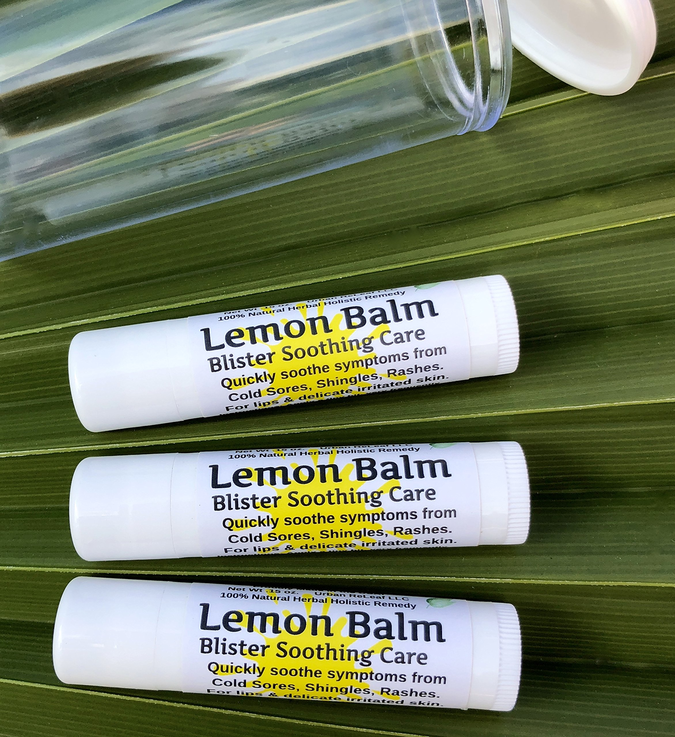 Lemon Balm Blister Soothing Care Stick! Quickly Soothe Cold Sores, Shingles, Chicken Pox, Rashes, Herpes, Molluscum, Bug Bites. Suppress Future outbreaks. 100% Natural.''Goodbye, Itchy red Bumps!'' (3)