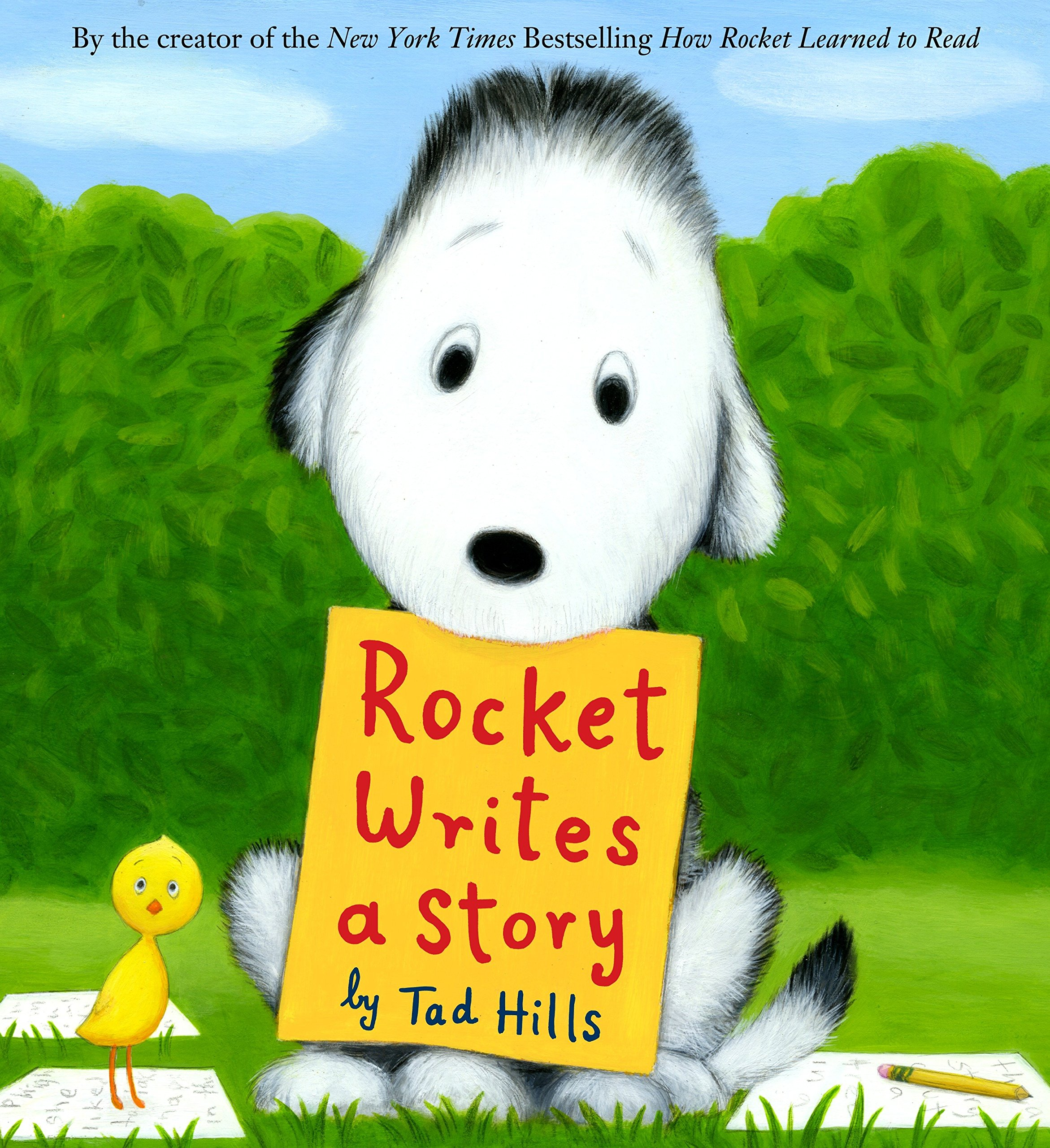 Image result for rocket writes a story