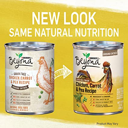 Purina beyond grain free chicken carrot pea recipe ground entree purina beyond grain free chicken carrot pea recipe ground entree adult wet dog food twelve 12 13 oz cans pet supplies amazon forumfinder Images