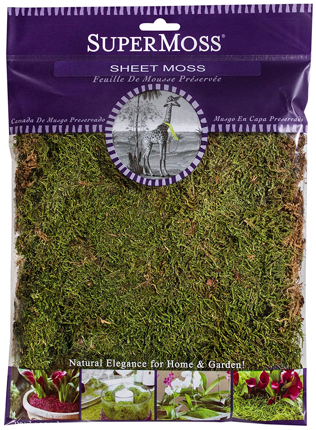 SuperMoss (21509) Sheet Moss Preserved, Fresh Green, 2oz 7 59834 21509 7