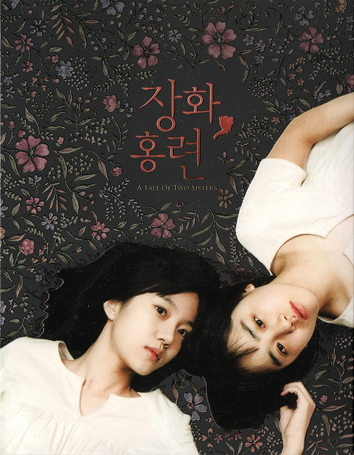 a tale of two sisters english subtitles free download