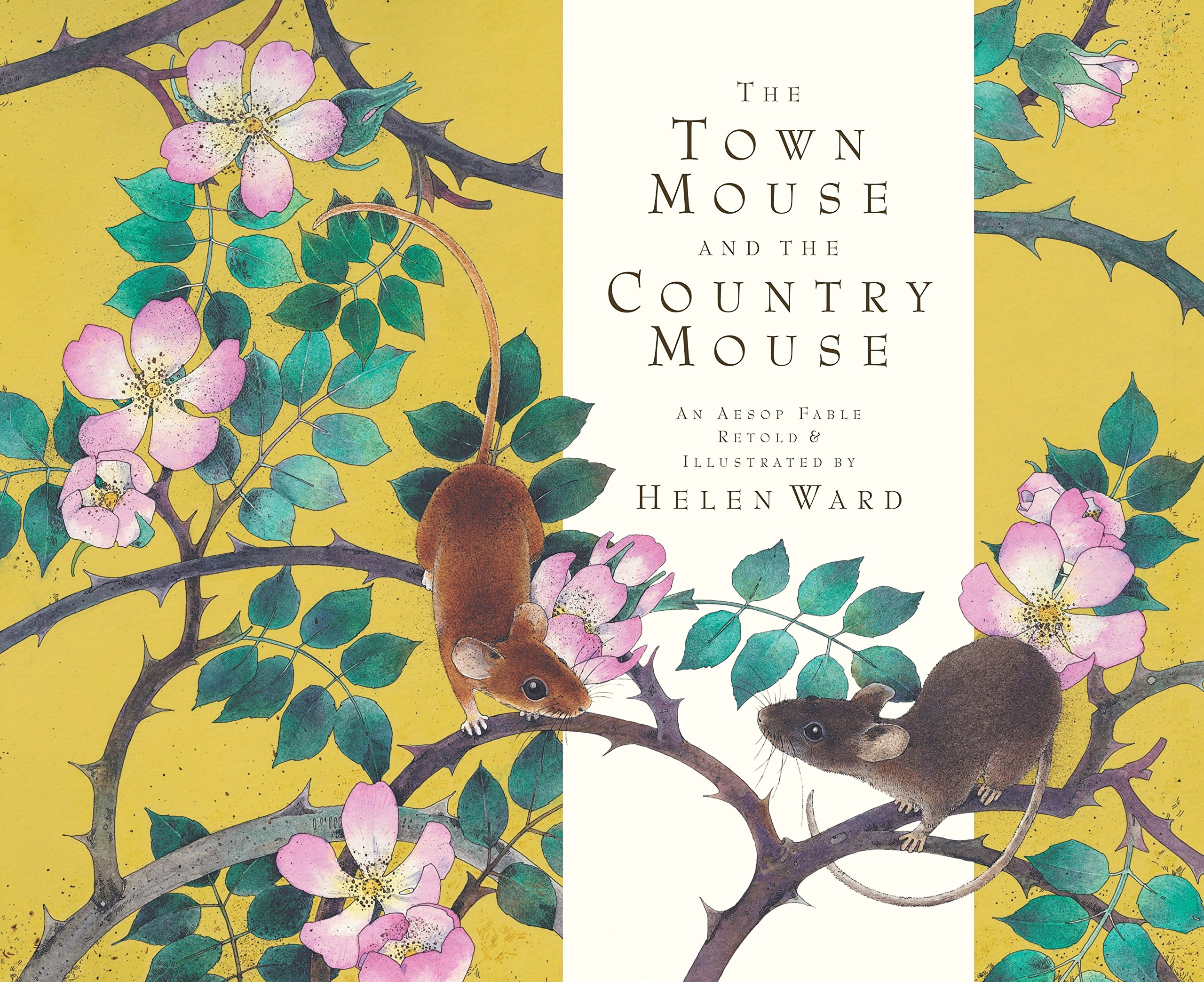 0c80db2e5dea The Town Mouse and the Country Mouse  Helen Ward  9780763660987 ...