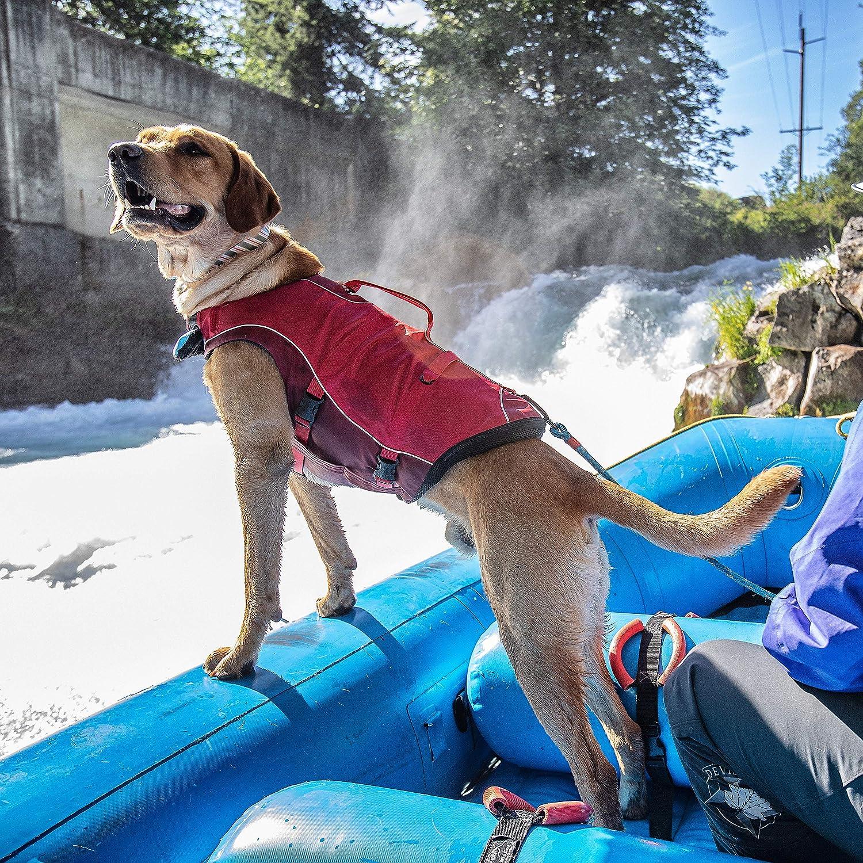 gilet de sauvetage pour chien sur un bateau gonflable