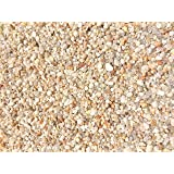 Garden Bloom Authentic Mexican Beach Pebbles 1/4 Inch - Perfect for Succulents, Aquariums, Terrariums, Fairy Gardens, All Landscape Applications (1 LB)