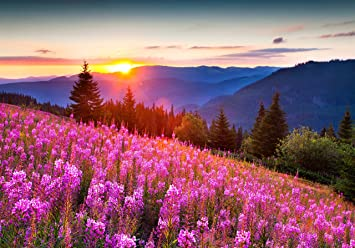 Jigsaw Puzzle Autumn Landscape Mountains Pink Flowers Scenery 500