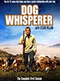 Dog Whisperer with Cesar Millan: The Complete First Season [DVD] [2004]