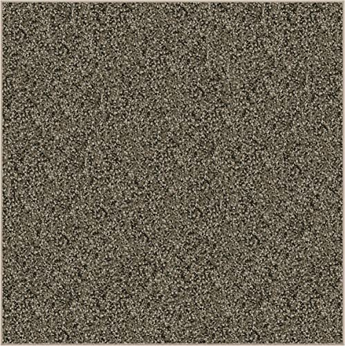 12'X12' Square Woodland Fleck Frieze Shag Indoor Area Rug Carpet. Soft and Plush 32 oz 3/4″ Thick Frieze Indoor Area Rug
